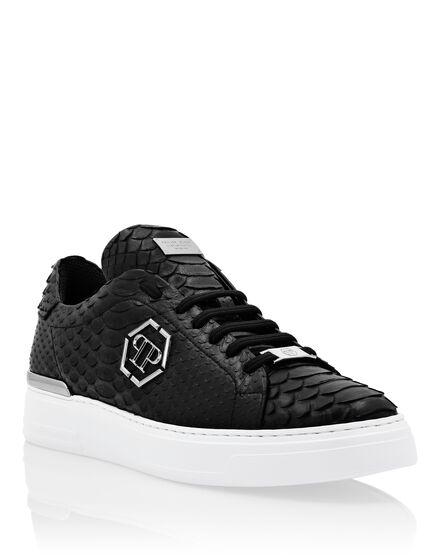 Python Lo-Top Sneakers Hexagon