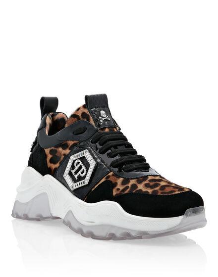 Runner elaphe and  Leopard